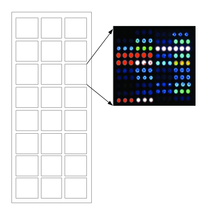 microarray slides and gaskets